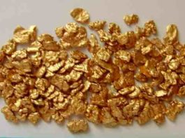 Alaskan gold nuggets for sale